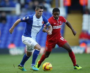 season 2013 14/sky bet championship birmingham city v charlton athletic/sky bet championship birmingham city v charlton